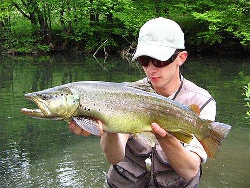 Ribič s pastrvom ulovljenom na Vitunjčici